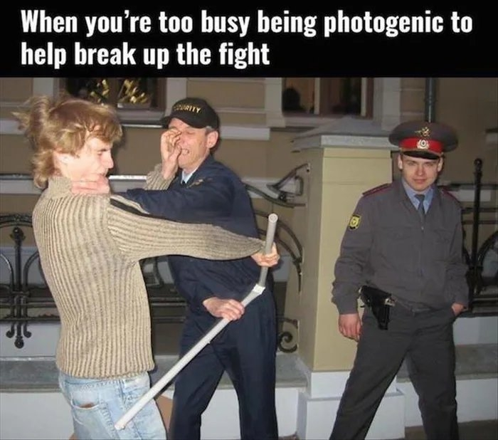 When you're too busy being photogenic to help break up the fight