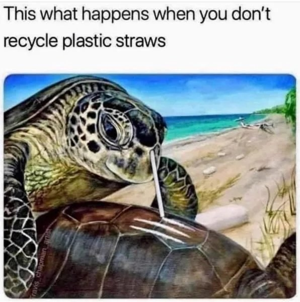 This what happens when you don't recycle plastic straws ravis chapman artit
