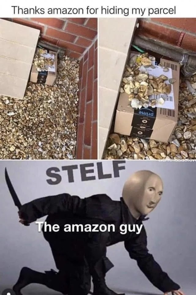 Thanks amazon for hiding my parcel STELF The amazon guy