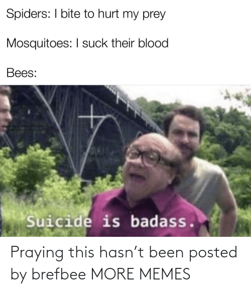 Spiders: I bite to hurt my prey Mosquitoes: I suck their blood Bees: Suicide is badass.
