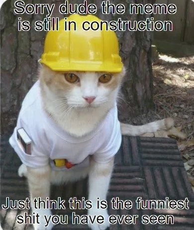 Sorry dude the meme is still in construction Just think this is the funniest shit you have ever seen