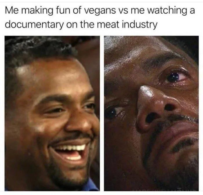 Me making fun of vegans vs me watching a documentary on the meat industry