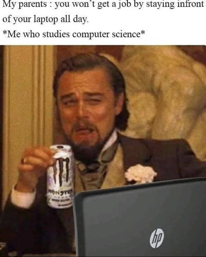 My parents : you won't get a job by staying infront of your laptop all day. *Me who studies computer science* hp